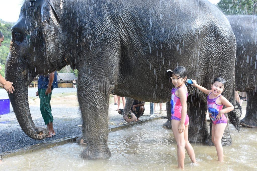 Green Elephant Sanctuary Park
