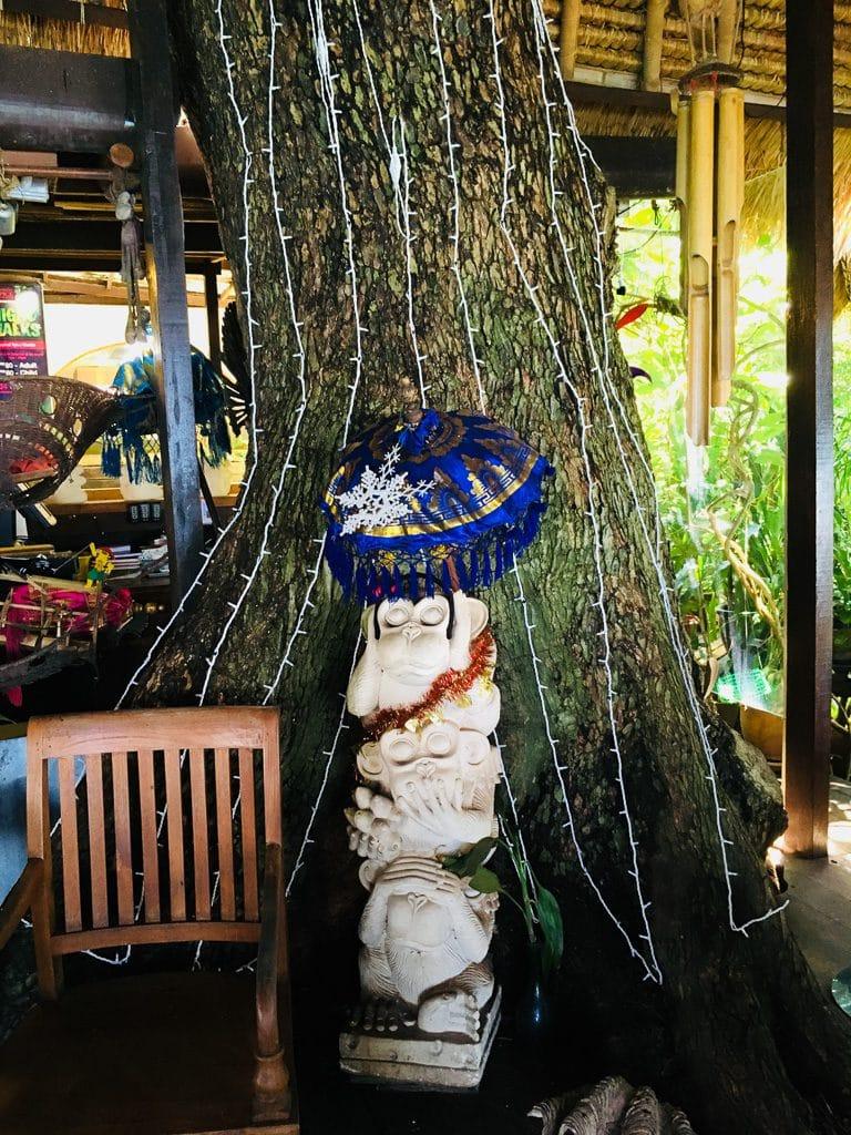 檳城美食 - Tree Monkey