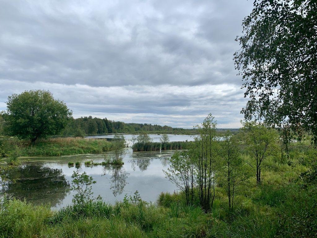 Elk Island - Landscape